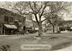 the plaza in Ashland, Oregon in days of yore. (They just cut these trees down..:(