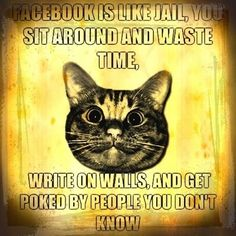 FACEBOOK IS LIKE JAIL, YOU SIT AROUND AND WASTE TIME, WRITE ON WALLS, AND GET POKED BY PEOPLE YOU DON'T KNOW