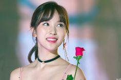 Nayeon, South Korean Girls, Korean Girl Groups, San Antonio, Twice Korean, Myoui Mina, Japanese American, Reality Tv Shows, Korean Music