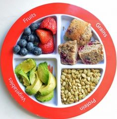 MyPlate for the Picky Eater.  If you have a picky eater, you NEED one of these plates to help save your sanity and help your child!