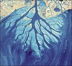 Coastal and Marine Geology Program > Louisiana Coastal Wetlands: A Resource At Risk  USGS