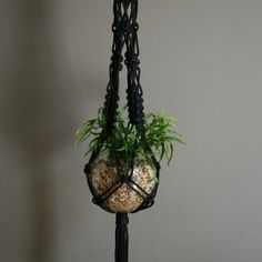 Bold, big and beautiful macrame plant hanger in seriously thick and silky black rope. This is truly a statement piece. Made from marine grade rope it can be used indoors or out. Macrame Hanging Planter, Macrame Plant Holder, Plant Holders, Hanging Planters, Hanging Gardens, Macrame Plant Hanger Patterns, Macrame Plant Hangers, Macrame Patterns, Macrame Projects