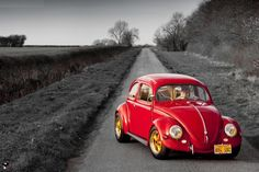 Beetle Volkswagen, T1 Bus, Vw Classic, Beetle Car, Vw Vintage, Hey Man, Beautiful Bugs, Sweet Cars, Cute Cars