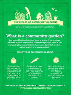 City Gardening Community Nutrition is a combination of healthcare,nutrition programs, politics, and knowledge. Community gardens are an essential start in creating a community that values nutrition and providing fresh food. Healthy Fruits And Vegetables, Urban Farming, Urban Agriculture, Garden Projects, Garden Ideas, Community Service, Growing Flowers, Nutrition Program, Garden Planning