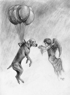 All dogs go to heaven.they meet you at the rainbow bridge Weimaraner, Vizsla, All Dogs, I Love Dogs, Cute Dogs, Dogs And Puppies, Doggies, Animal Quotes, Dog Quotes