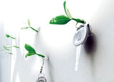 Whether you're looking for a simple, minimal solution for a place to hang your coat or keys, or if you just have a knack for fantasy, you'll appreciate this clever wall ornament by Jeong Hwa Jin. Leaf brings vitality to dull walls by covering unsightly nails and providing a unique way to hold your keys, jacket or other items.