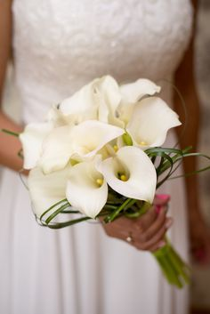 50 inspirations for the bridal bouquet - SAMsations wedding .- Bridal bouquet calla-and-white - White Wedding Bouquets, Bride Bouquets, Flower Bouquet Wedding, Bridesmaid Bouquet, Tulip Bridal Bouquet, Calla Lily Bouquet, Succulent Bouquet, Calla Lillies, Fall Wedding