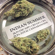 4g/$45 Indian Summer is a full Indica strain !!! #collective #medicated #420 #indica #friyay #friday #tgif #fire #buds #herb #ganja #buddha #medicalmarijuana