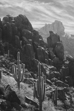The Superstition Mountains: These were practically in my backyard when I lived in AZ. Miss it so much:(