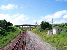 * Estrada de Ferro Carajás *  Brasil.