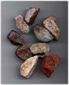Bulk Fossils.net - Dinosaur Bone - 20 Select Pcs for $9.95 (1st Grade Quality)