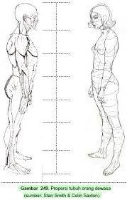 Hasil Gambar Untuk Gambar Anatomi Tubuh Manusia Secara Senirupa Menggambar Anatomi Tubuh Manusia Sketsa