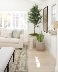 Living Room Nook with indoor plants. Living Room Nook, Home, Interior, Apartment Living Room, Living Room Flooring, Indoor Plants Diy, Plant Decor Indoor, Nook, Room