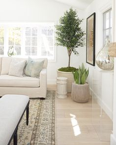 Kathryn Miller Interiors, Corona Del Mar. Living Room Nook with indoor plants.