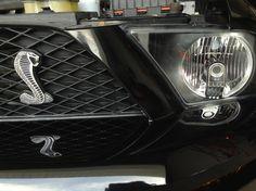 Gorgeous Cobra emblem. Vehicles, Car, Sports, Hs Sports, Automobile, Sport, Autos, Cars, Vehicle