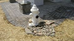 Hydrant fountain for the dog yard.