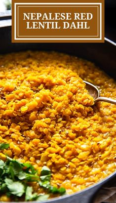 Try my Nepalese Red Lentil Dahl for a healthy and vegetarian dinner option! Red lentils cooked with onions, garlic, ginger and aromatic spices into a delicious curry served over plain rice. Lentil Dahl, Lentil Stew, Dinner Options, Fabulous Foods, Lunch Time, Lentils, Onions, Whole Food Recipes, Vegetarian Recipes