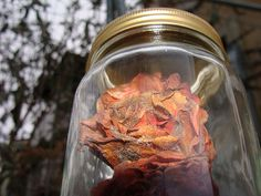 The very first jar in my 365 Jars project contains 3 dried out, decaying roses from my garden.