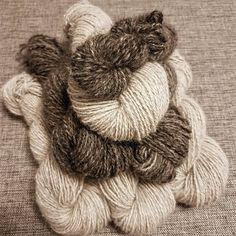 Handspun #chiengora yarn. Alaskan Malamute, Koi, Instagram