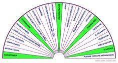 Les Chakras, Reiki, Meditation, Spirituality, Father, Karma, Messages, Recherche Google, Divination