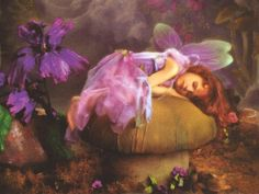 Images in Album: Category: Magical Pictures; Angel Fairy, Dance Of The Sugar Plum Fairy, Dark Fairy In Forrest, D and others. Fairy Land, Fairy Tales, Fairy Dust, Magic Fairy, Fairy Wallpaper, Hd Wallpaper, Wallpapers, Kobold, Fairy Pictures