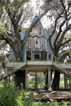 Abandoned Victorian tree house, Brooksville, FL. The entrance to the driveway of the home is covered in brambles and is obviously all overgrown. The many buildings on the property are also abandoned and falling into decay.