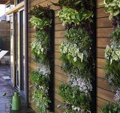 best interior design ideas: indoor/outdor herb garden wall