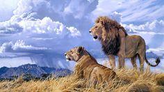 Lion Mates on the Savanna Prairie.