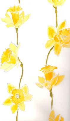water color daffodils