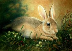 Bunny Rabbit Art Print by Melody Lea Lamb