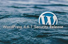 WordPress SEO is crucial for your WordPress website's success. Find out what are the most important factors in the SEO when usng WordPress. Wordpress Guide, Wordpress Plugins, Wordpress Theme, Wordpress Support, Wordpress Org, Ecommerce Websites, Affiliate Marketing, Social Media Marketing, Digital Marketing