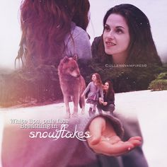 renesmee and edward relationship marketing
