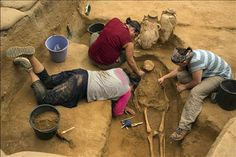 """Israel find may help solve mystery of biblical Philistines. The archaeologists kept the discovery a secret for three years until the end of their dig because of a unique hazard of archaeology in modern-day Israel: they did not want to attract ultra-Orthodox Jewish protesters, Master said.  """"We had to bite our tongues for a long time,"""" Master said.  In the past, the ultra-Orthodox have staged demonstrations at excavations where human remains are found, arguing that the remains could be Jewish…"""