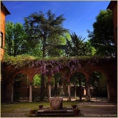 La #PicOfTheDay #turismoer si riposa sotto il glicine nel cortile rinascimentale di #PalazzoRoverella, #Ferrara. Complimenti e grazie a @michyzen / Today's #PicOfTheDay #turismoer rests beneath the wisteria in the #Renaissance courtyard of #Roverella Palace, #Ferrara. Congrats and thanks to @michyzen