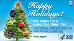 Health and Safety Tips for the Holidays - from the CDC