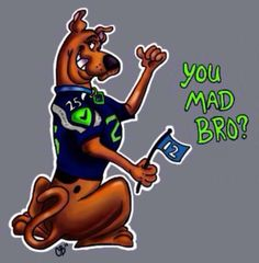 Even Scooby Doo loves the Seahawks!