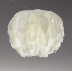 nl - ostrich feather pendant lamp - by South African designer Haldane Martin Feather Lamp, South African Design, I Love Lamp, Light Covers, Paper Lanterns, Paper Lamps, Lamp Shades, My New Room, Floral Arrangements