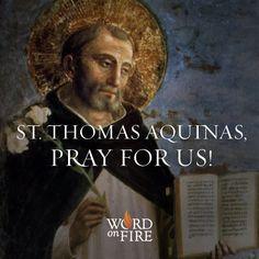 St. Thomas Aquinas, patron saint of Academics, pray for us!  #Catholic #Pray #DoctoroftheChurch