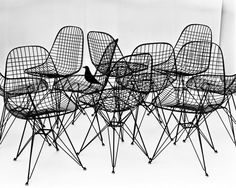Charles and Ray Eames are among the most influential designers of the century. Together they moved fluidly between the fields of photography, film, architecture, exhibition-making, and furniture and product design. The Eames Office in Los Angeles was a… Charles Eames, Vitra Design Museum, Wire Chair, Eames Chairs, Bar Chairs, Dining Chairs, Ikea Chairs, Metal Chairs, Lounge Chairs