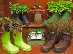Shoe Garden Containers