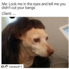 "14 Likes, 1 Comments - Eden Mavity (@edeegourmet) on Instagram: ""Yaaaaasssss! Regram @hairdoc911 this is #everything #bangtrim #clientselfie…"""