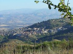 Caropepe. Sicilia.