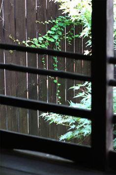 Kyoto, Japan 中京区 Tre Porcelliniトレ・ポルチェリーニ  (Photo : Gallery I) https://www.facebook.com/Kyoto.GalleryI