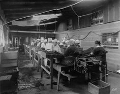 Sorting room at the Adams Olive Cannery, located in the Sunland/Tujunga area, circa 1920s. Photographer: J. H. Lamson.  Little Landers Historical Society. San Fernando Valley History Digital Library.