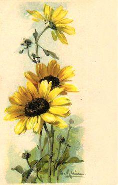 Мобильный LiveInternet  Catharina Klein (Катарина Кляйн). 1861-1929 | Коша_рыжая - Дневник Коша_рыжая |