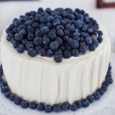 + images about Blueberry Hill on Pinterest | Blueberries, Blueberry ...