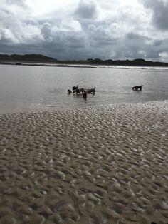 In Fleetwood sea