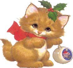 kitten Christmas smile