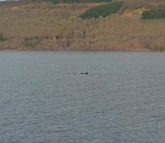 Video: Has Google found the Loch Ness Monster? - Telegraph