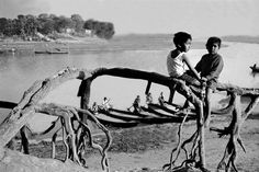 soisab samrajjao  - the declining  historical banyan tree at duari para barrage mirpur dhaka .. was the most favourite outing spot of Alokchitracharja ( Mentor ) M A Beg now a vanishing place by the land grabbers and sand traders .. taken in 1990 ..  Copy